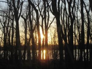 IMG_2291_sunset