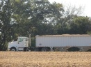 Soybeans loaded into a waiting truck.