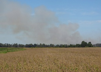 distant harvesting dust cloud