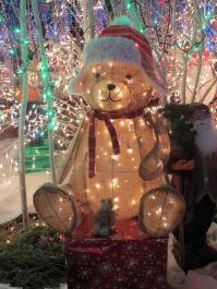 Santa's Village 10