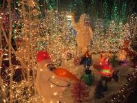 Santa's Village 11