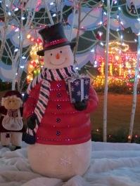 Santa's Village 12
