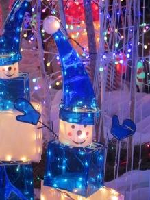 Santa's Village 13