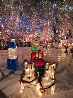 Santa's Village 6