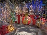 Santa's Village 7