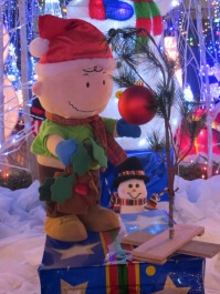 Santa's Village 8