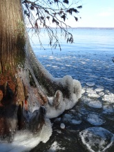 ice on the lake 13