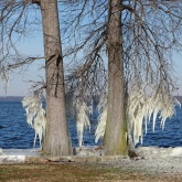 ice on the lake 3