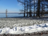 ice on the lake 8