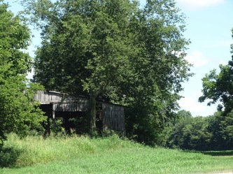 Barn at Moss Island Wildlife Management area 2