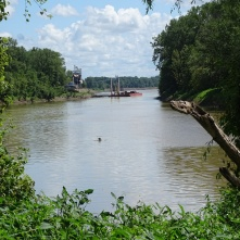 Obion River flowing to the Mississippi 2