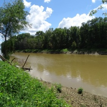 Obion River flowing to the Mississippi