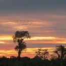 sunset 15
